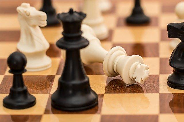 Шашки и шахматы